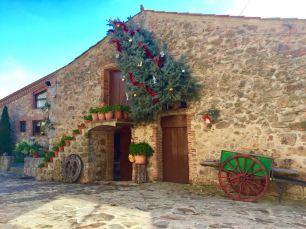 Nadal a Els Cortals - Avet